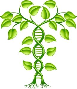cancer family history genetics hereditary disease